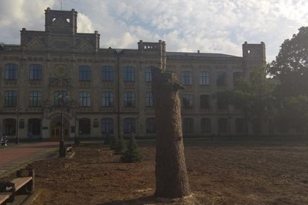Скандал у Києві: у парку КПІ Київзеленбуд спиляв столітні дерева