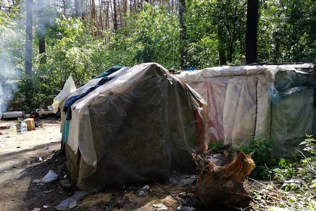 Ромы застроили халупами Голосеевский парк и рубят дубы на дрова