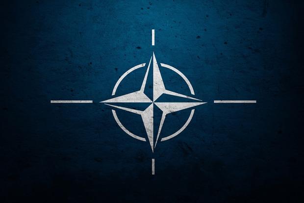 В НАТО отказались комментировать обвинения Трампа