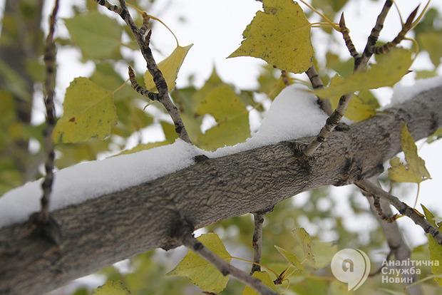 Снег в Украине выпадет необычно рано