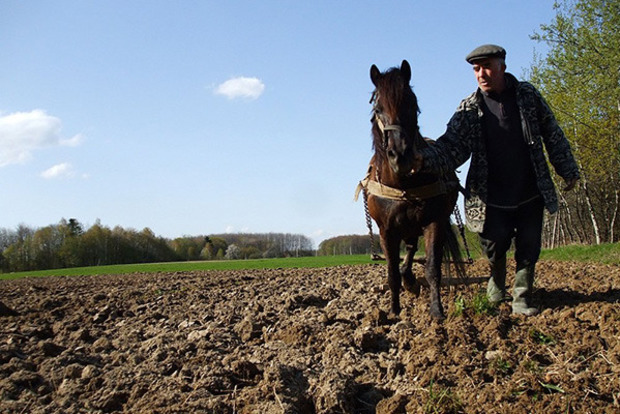 МВФ навязывает Украине политику лишения селян земли - Ляшко