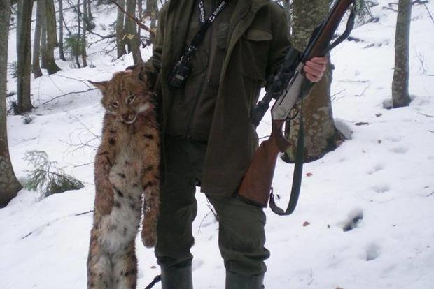 Депутат-ляшковець застрелив червонокнижну рись в Карпатах