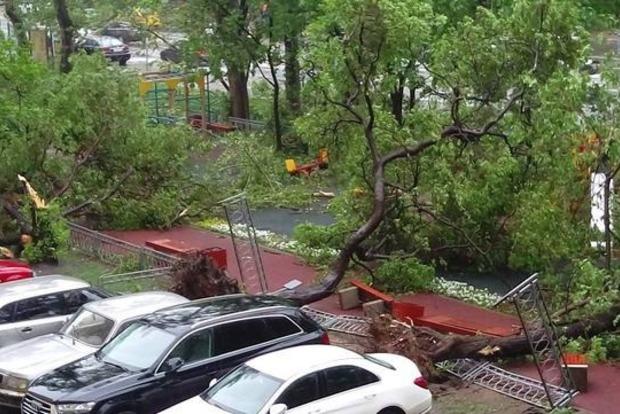 Во время урагана в Подмосковье погиб гражданин Украины