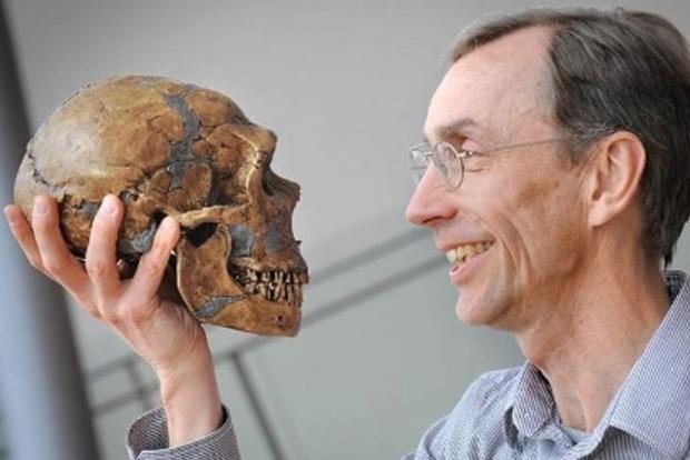 Ученые назвали органы, которые не нужны современному человеку