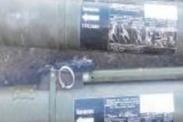 В Северске найден тайник с оружием и боеприпасами