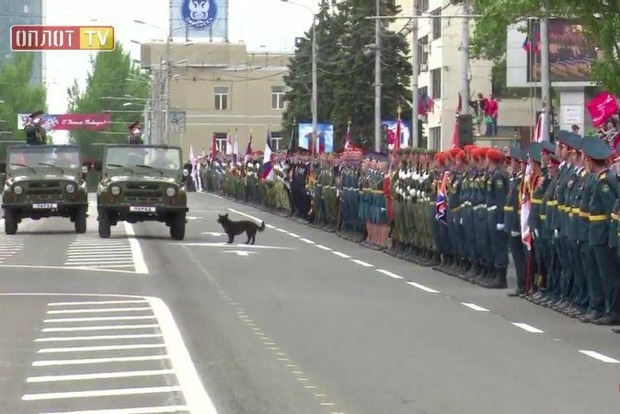 Какая-то сука принимает парад в Донецке: Соцсети подняли на смех боевиков