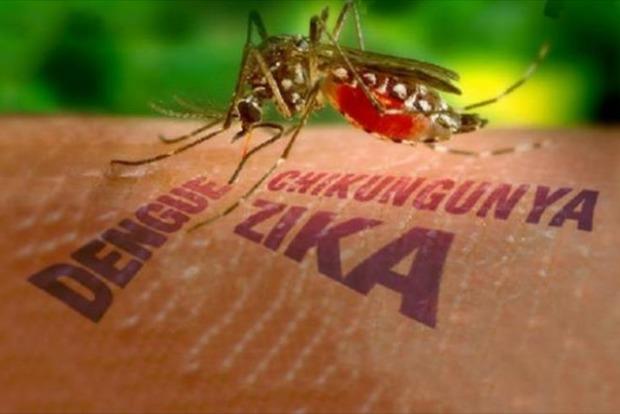 Вирус Зика обнаружили у мужчины в Дании