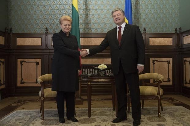Грибаускайте: Литва пытается помочь Украине в получении безвиза с ЕС