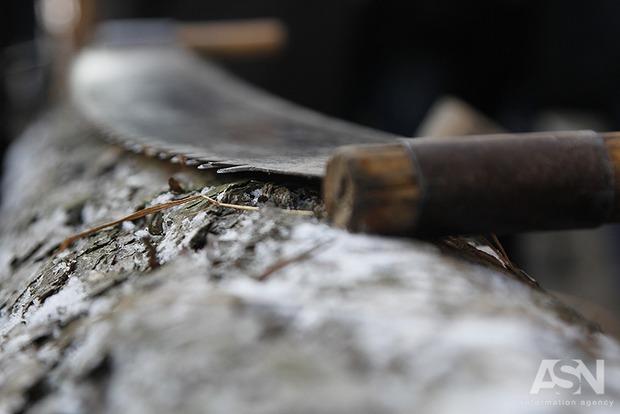 Эксперт о моратории на экспорт леса: Нужно кивать, высказывать озабоченность, но не отменять