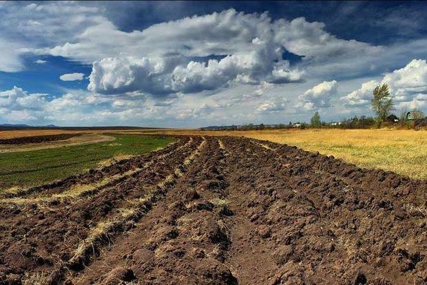 Землю Украины будут продавать на «электронных торгах»