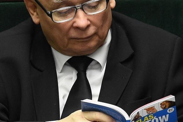 Повеселил: на заседании Сейма глава правящей партии читал книжку о котах