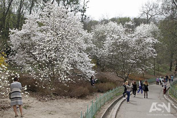 Погода на 17 апреля: в Украину возвращаются холода