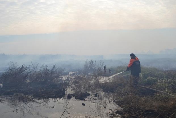 В Полтавской области уменьшилась площадь тления торфяников