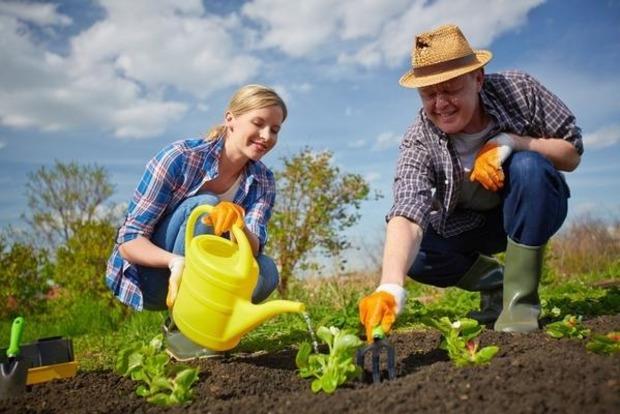 В какие дни апреля лучше отложить лопату - лунный календарь огородника