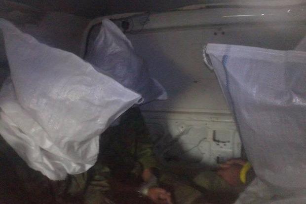 Появилось фото захваченных в плен боевиков (фото)