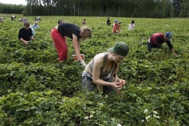 В2016 году Польша изменит условия трудоустройства иностранцев