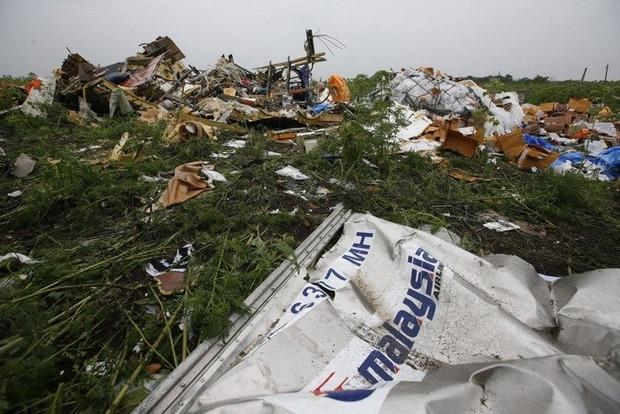 Катастрофа MH17: В ГПУ заявили об установлении около 100 человек, причастных к трагедии