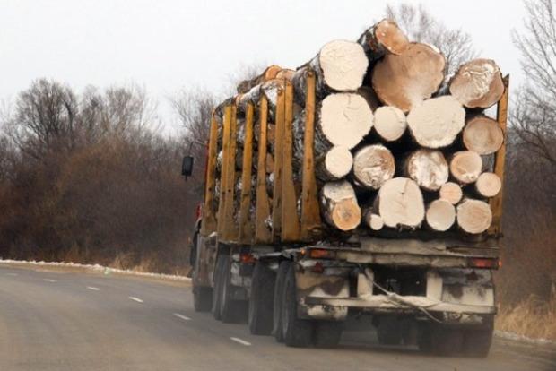 За год моратория на вывоз леса наша деревообрабатывающая промышленность выросла на 10%