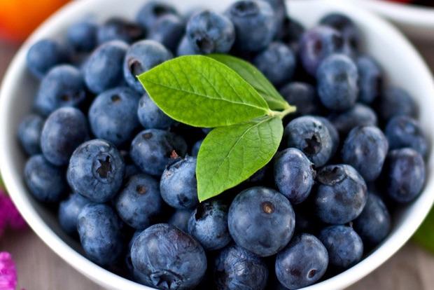 Польские фермеры не хотят собирать ягоды из-за дешевого импорта из Украины