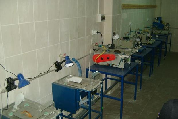 Белан: В Ровенской области работал подпольный цех по обработке янтаря