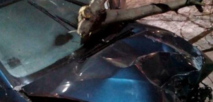 Остановил столб: Под Киевом пьяная авто-леди устроила гонки с полицией