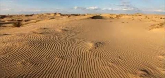 В Херсонской области зафиксирована рекордная жара - 68 °С на грунте