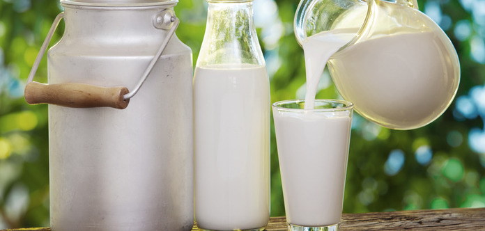 the hazards of milk essay Strong essays: the hazards of milk - the usda say that the average person needs to drink 2-3 fluid cups of milk per day, depending on age.