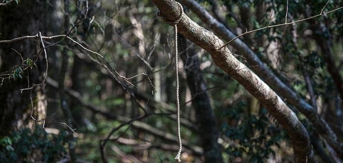 Аокігахара. Моторошні фото лісу самогубств у Японії