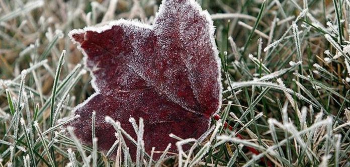 Антициклон принесет в Украину заморозки и похолодание