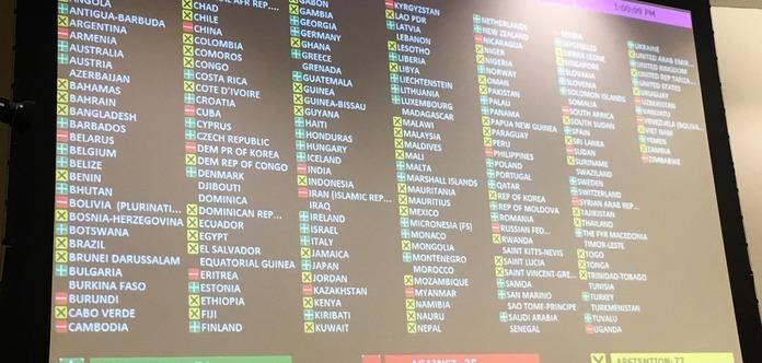 Стало известно, кто голосовал против резолюции ООН по Крыму
