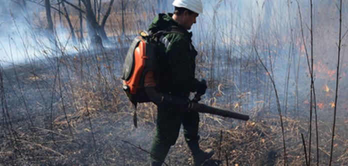 Невыгодно: в Красноярском крае пожарные решили не тушить пожар на 5 тысяча га леса