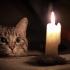 В Луганске наступил блекаут: Украина отключила город от электроснабжения