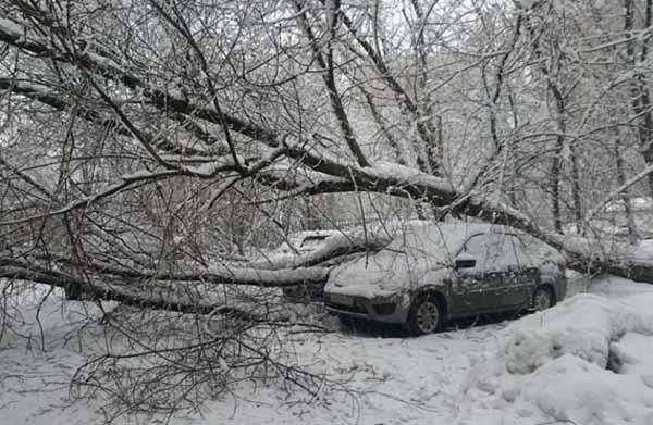 Картинки по запросу кадри смертельного снігопаду в Москві 2018
