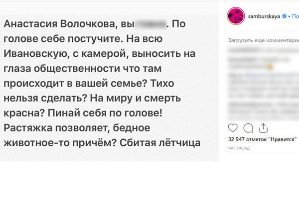 анастасія волочкова, новини про Волочкову, захист тварин, волочкова і собака