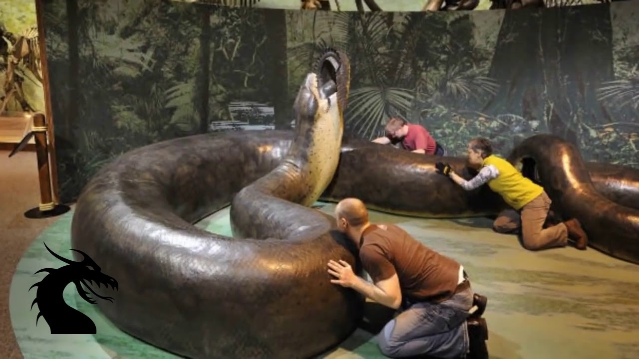 найбільша змія на планеті, Тітанобоа, монстри