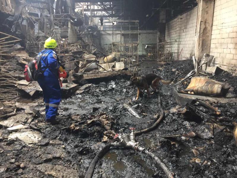 ВБоярке впожаре напроизводственном предприятии погибла женщина